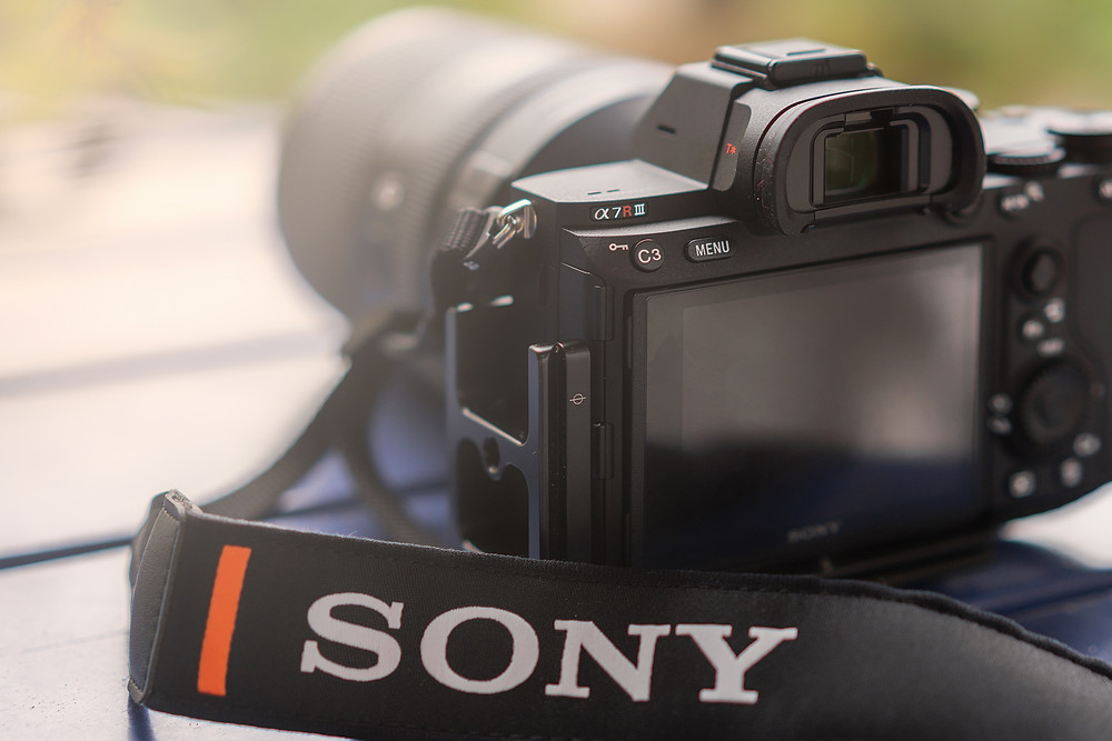 First Day With The New Sony A7RIII by Albert Dros