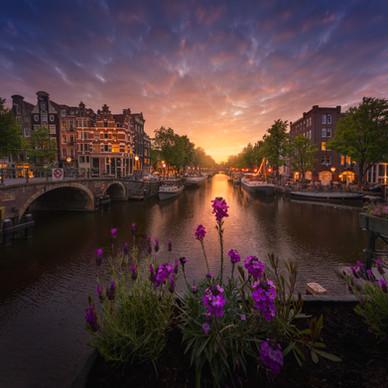 Amsterdam Springtime