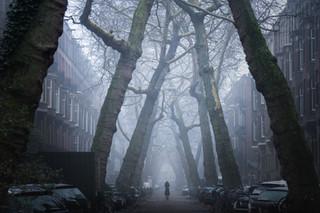 Lomansstraat Fog