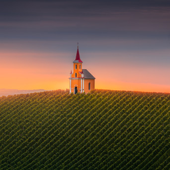 Vineyard Church