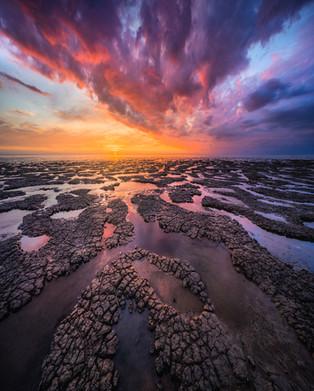 The Dutch Coast