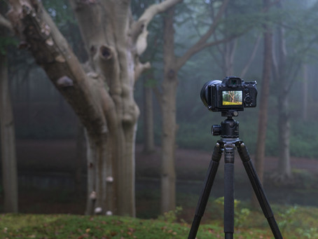 Sony A7IV First Impressions