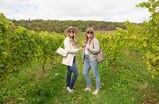 Valley Wine Tours-6 2.jpg