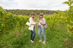 Valley Wine Tours-6 2