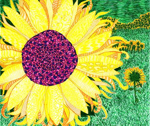 """Sunburst"" Fine Art Print"