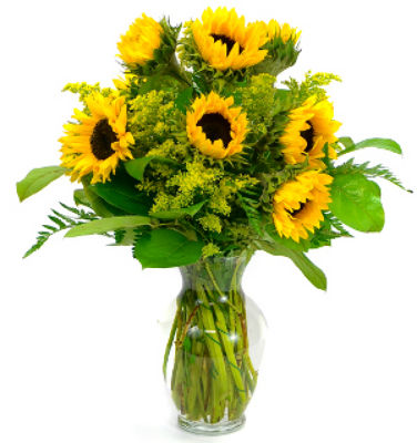 sunflowersxg.jpg