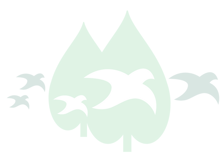GC_Logo_Website-01.png