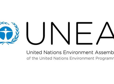 環保促進會獲得聯合國環境大會(UNEA)的觀察員資格