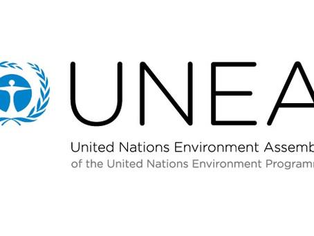 環保促進會獲得聯合國環境規劃署(UNEP)的非政府組織認證