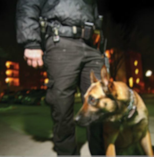Industrial Commercial Construction Security Guards Officers K-9 dog Teams