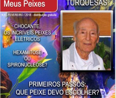 """Nova Revista Brasileira """"Meus Peixes"""""""