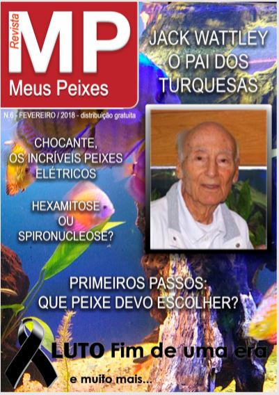Revista Meus Peixes Fevereiro edição número 6