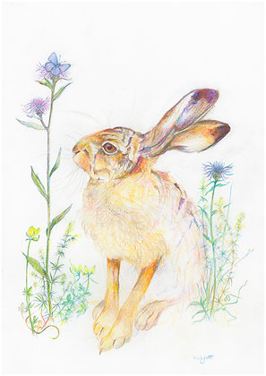 New - Harriet and the Blue Butterfly - Limited Edition Print