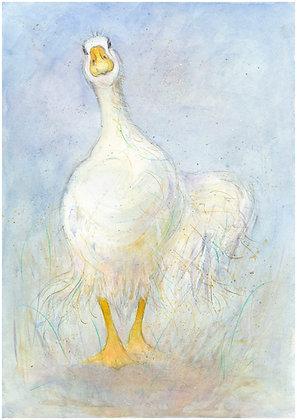 Elena - White Goose