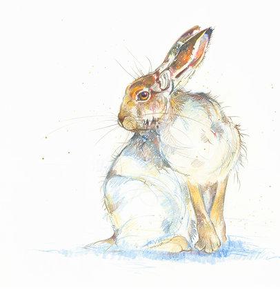 Isla - Mountain Hare 30x29cm