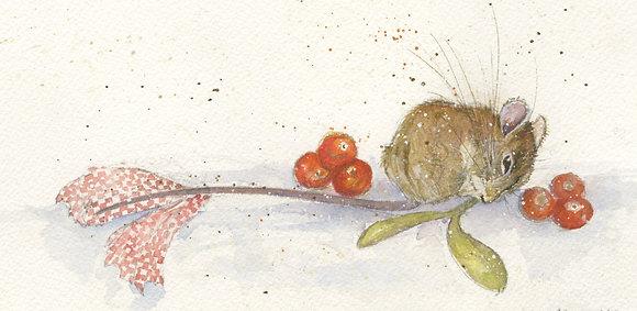 William Mistletoe Mouse