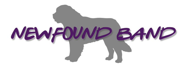 newfound Band logo_edited.png
