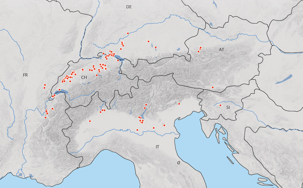 Unesco-Welterbe_Pfahlbauten_.jpg