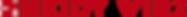 Hi_Logo_HeidyWirz_rot.png