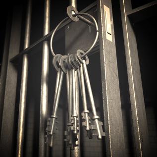 Custodial & High Security Sites