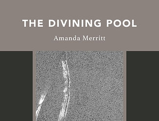 Front Cover Design - The Divining Pool4.