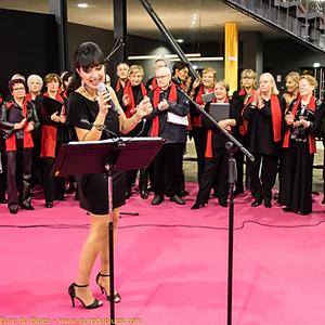 Repas concert au Salon du mariage à Caen