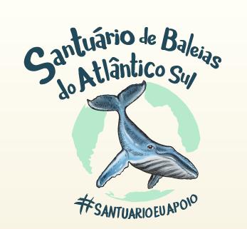 SANTUÁRIO DE BALEIAS DO ATLÂNTICO SUL ESTÁ MAIS PERTO DE SE TORNAR REALIDADE NO BRASIL, AFIRMA MINIS