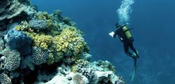 exploration-sous-marine-de-sites-du-pacifique-sud