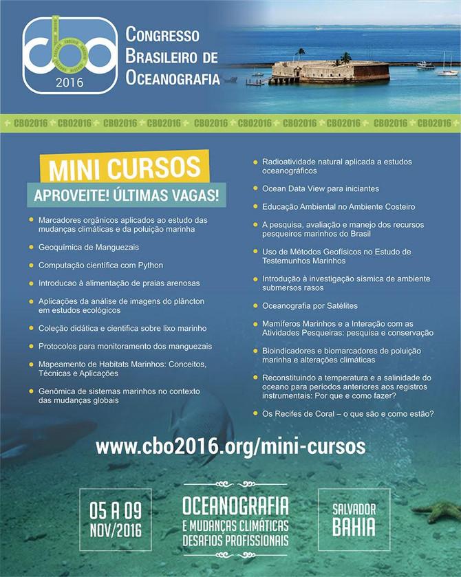 ÚLTIMAS VAGAS PARA OS MINICURSOS OFERECIDOS NO CONGRESSO BRASILEIRO DE OCEANOGRAFIA - CBO'2016