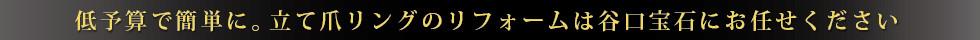 広島_ジュエリーリフォーム+.jpg
