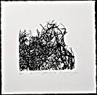 Entanglement Screen print of an original