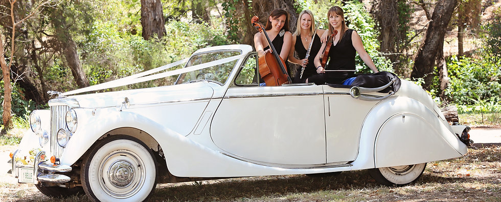 Cello Hire String Perth