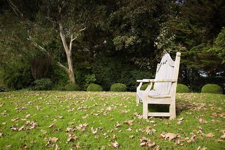 Willemein's Garden