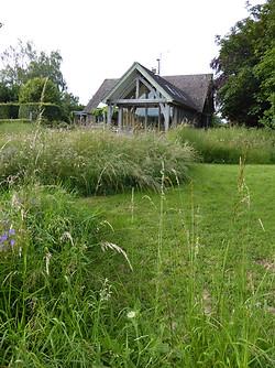 Ruth's meadow garden July