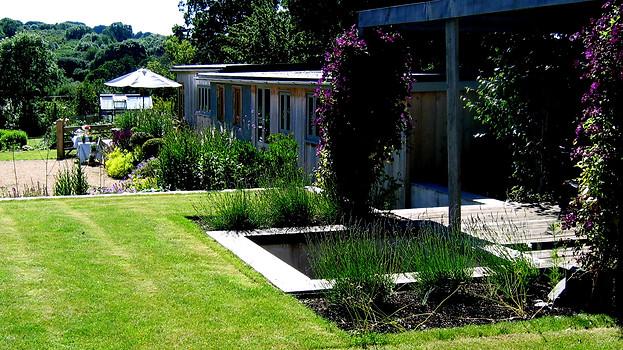 Georgina's garden