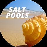Salt Pool icon copy.png