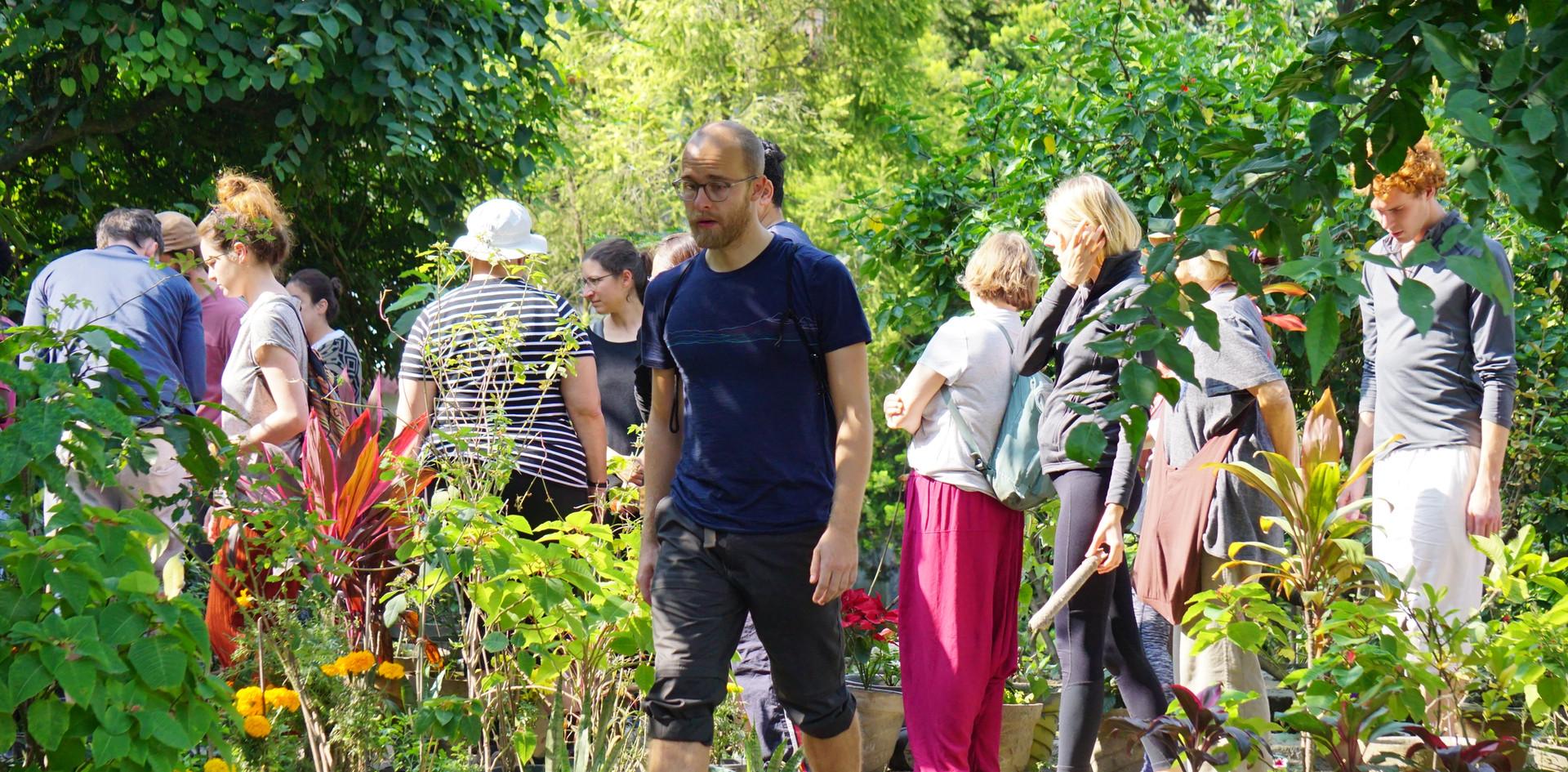 Garden Tour at Phool Chatti Ashram, Rishikesh