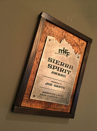 Sierra-Spirit-Rustic-Award.jpg