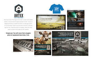 Artex Branding Case Study