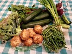 Week 5: Broccoli, Green Zucchini, Pickles, Green Beans, Yukon Gold Potatoes, Green Onions, Beets.