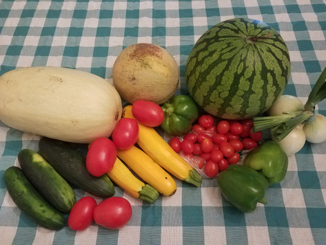 Week 11: Spaghetti Squash, Seedless Yellow Watermelon, Muskmelon, Red Grape Tomatoes, Roma Tomatoes, Green Bell Peppers, Fresh Onions, Slicing Cucumbers, Zucchini.