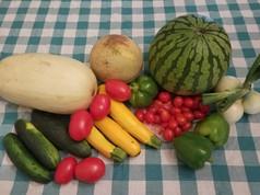 Week 11: Spaghetti Squash, Seedless Yellow Watermelon, Muskmelon, Red Grape Tomatoes, Roma Tomatoes, Green Bell Peppers, Fresh Onions, Slicing Cucumbers, Zucchini.