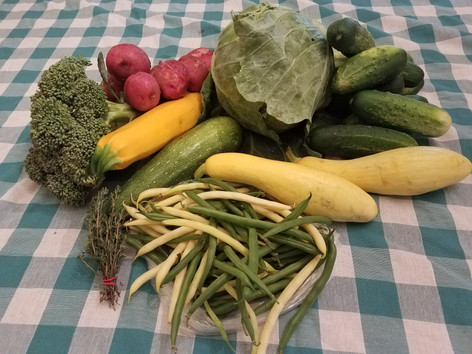 Week 6: Yellow Wax Beans & Green Bean mix, Zuchcini (mixed colors), Summer Squash, Broccoli, Cabbage, Pickles, Red Potatoes, Fresh Thyme