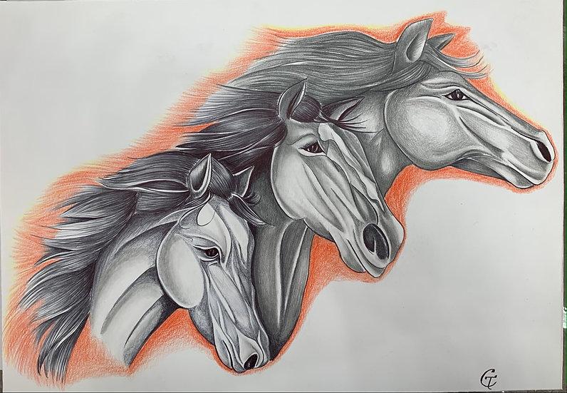 Los Caballos de la Lunbre (Horses of the Fire) by Gustavo Tafolla
