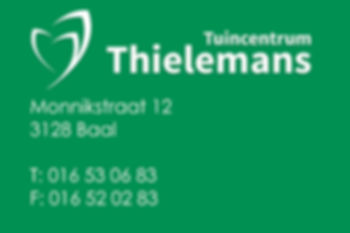 logo_Thielemans.jpg