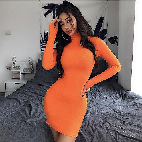 Turtleneck Long Sleeve Bodycon dress
