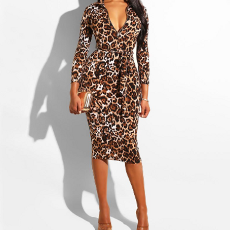 Leopard Print V-neck Long Sleeve Midi Dress