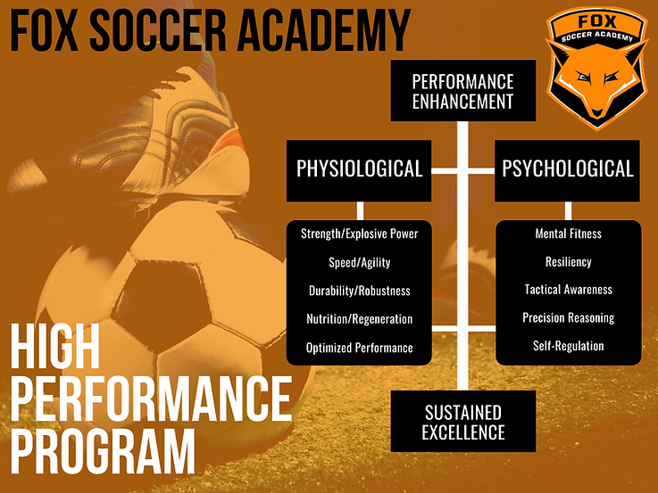 FSA High-Performance Program Chart.png