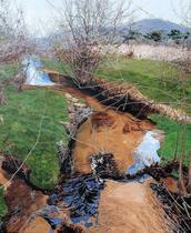 Jones Falls in April II