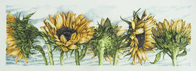"Carol Moore | ""Sunflowers On Parade"""